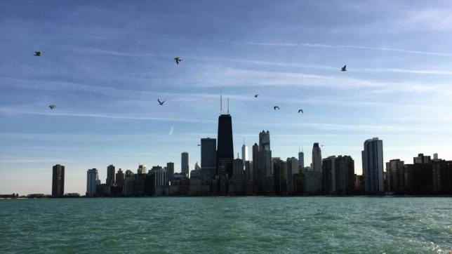The water. The clouds. The birds. And that skyline.