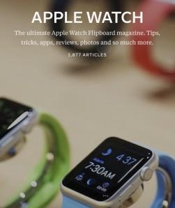 scott-kleinberg-apple-watch-flipboard